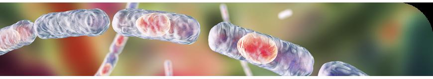 Condalab | Medios de cultivo para microbiología