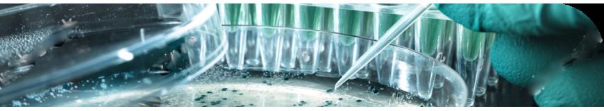 Condalab | Medios de cultivo para el clonaje